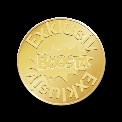 Boosta-Exklusiv-Seminare